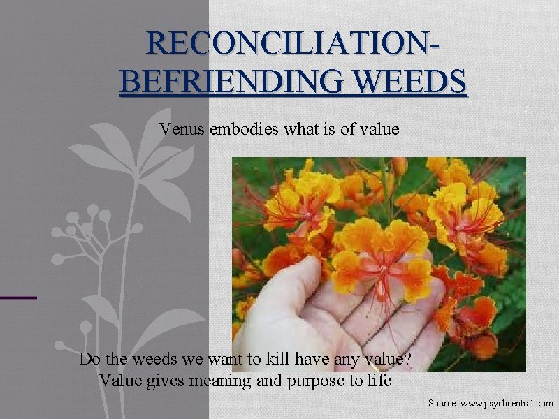 RECONCILIATION- BEFRIENDING WEEDS Venus embodies what is of value Do the weeds we want