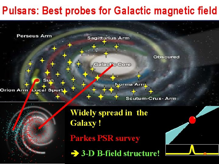Pulsars: Best probes for Galactic magnetic field Widely spread in the Galaxy ! Parkes