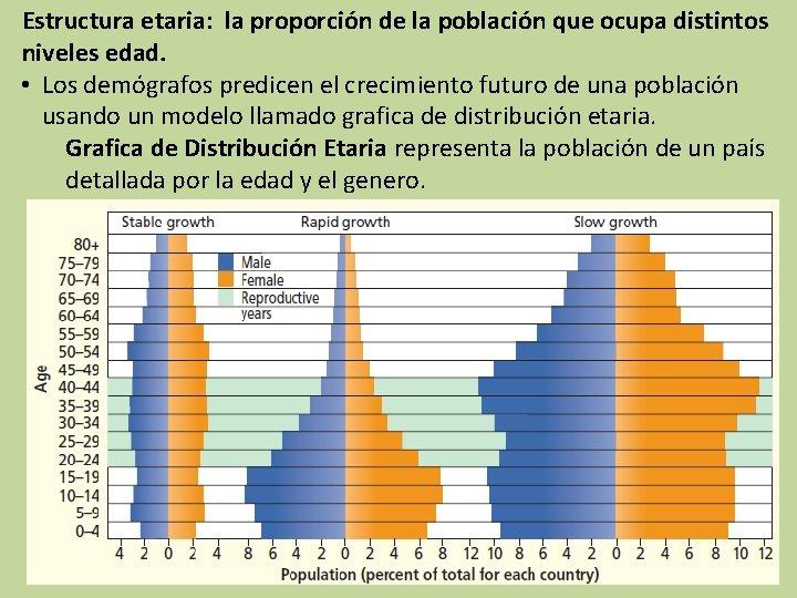 Estructura etaria: la proporción de la población que ocupa distintos niveles edad. • Los