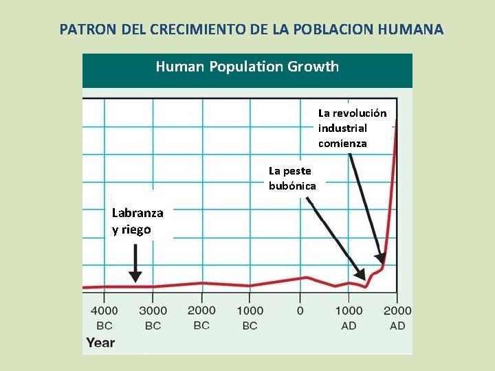 PATRON DEL CRECIMIENTO DE LA POBLACION HUMANA Human Population Growth La revolución industrial comienza