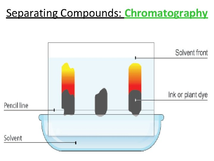 Separating Compounds: Chromatography
