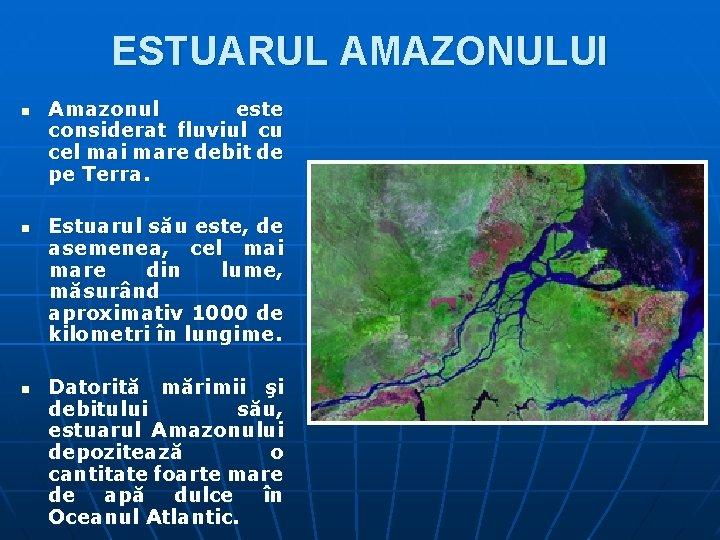 ESTUARUL AMAZONULUI n n n Amazonul este considerat fluviul cu cel mai mare debit