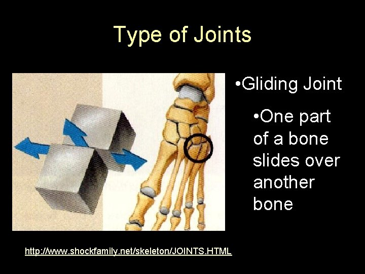 Type of Joints • Gliding Joint • One part of a bone slides over