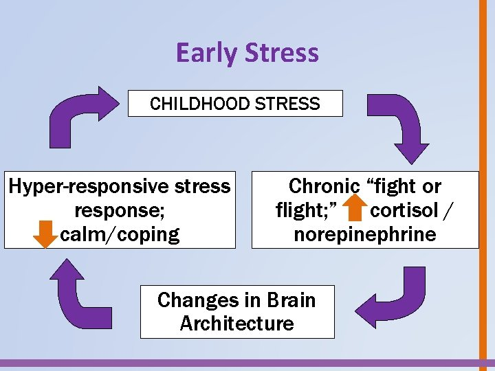 """Early Stress CHILDHOOD TOXIC STRESS Hyper-responsive stress response; calm/coping Chronic """"fight or flight; """""""