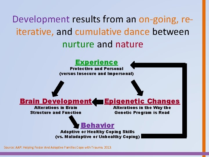 Development results from an on-going, reiterative, and cumulative dance between nurture and nature Experience