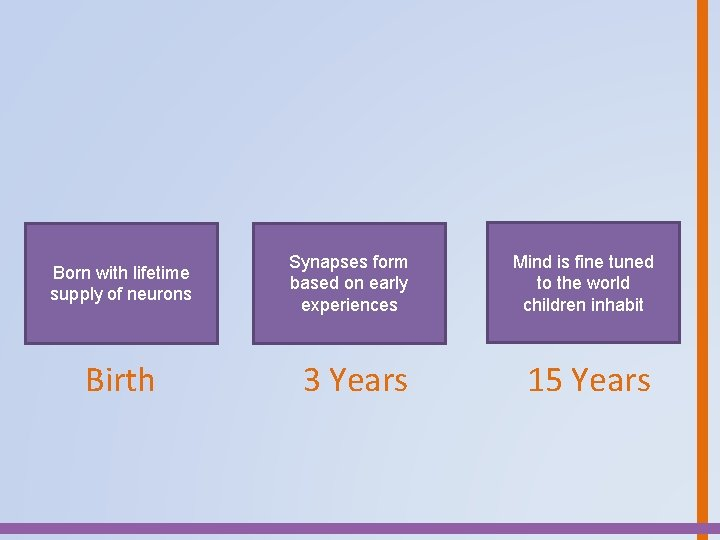 Born with lifetime supply of neurons Birth Synapses form based on early experiences Mind