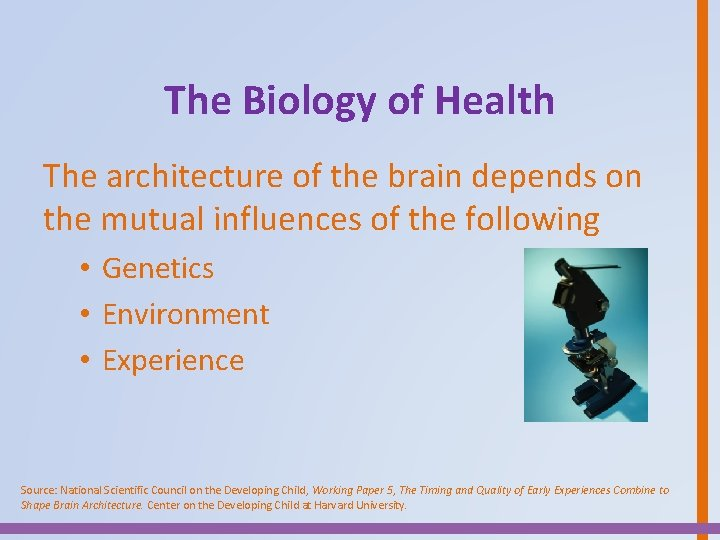 The Biology of Health The architecture of the brain depends on the mutual influences