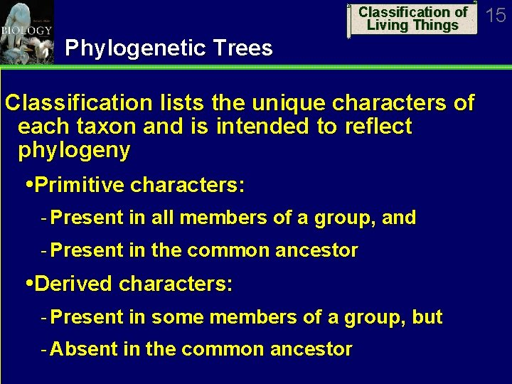Classification of Living Things Phylogenetic Trees Classification lists the unique characters of each taxon