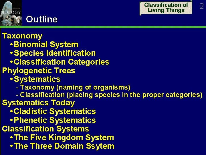 Classification of Living Things 2 Outline Taxonomy Binomial System Species Identification Classification Categories Phylogenetic