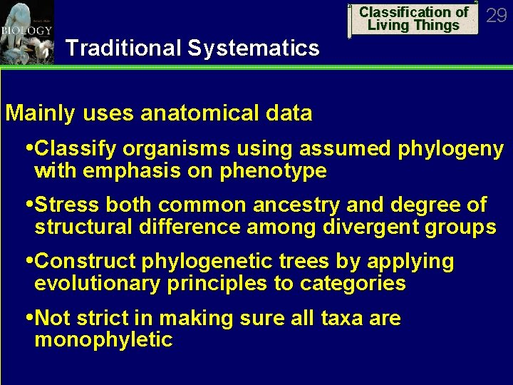 Classification of Living Things 29 Traditional Systematics Mainly uses anatomical data Classify organisms using