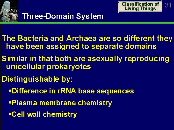 Classification of Living Things 31 Three-Domain System The Bacteria and Archaea are so different