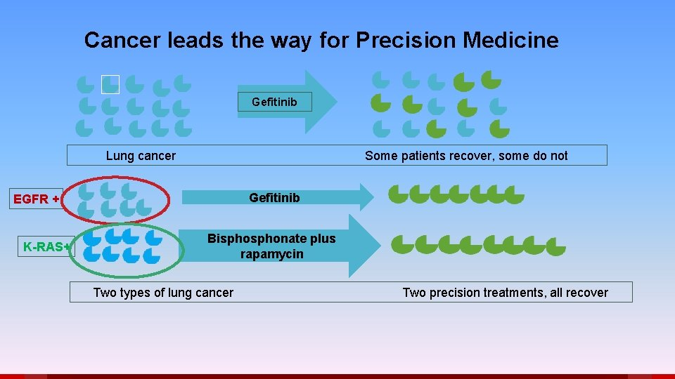 Cancer leads the way for Precision Medicine Gefitinib Lung cancer Some patients recover, some