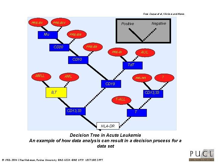 From Duque et al, Clin. Immunol. News. APRE-BV PRE-BIV Mu Negative Positive PRE-BIII PRE-BII