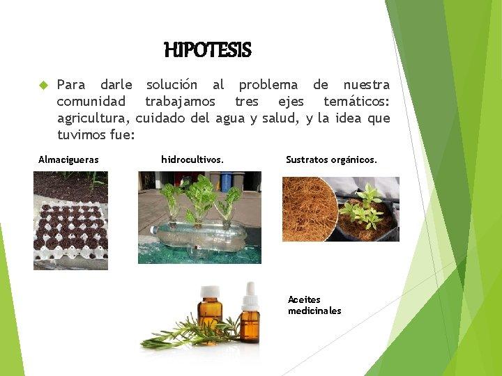 HIPOTESIS Para darle solución al problema de nuestra comunidad trabajamos tres ejes temáticos: agricultura,