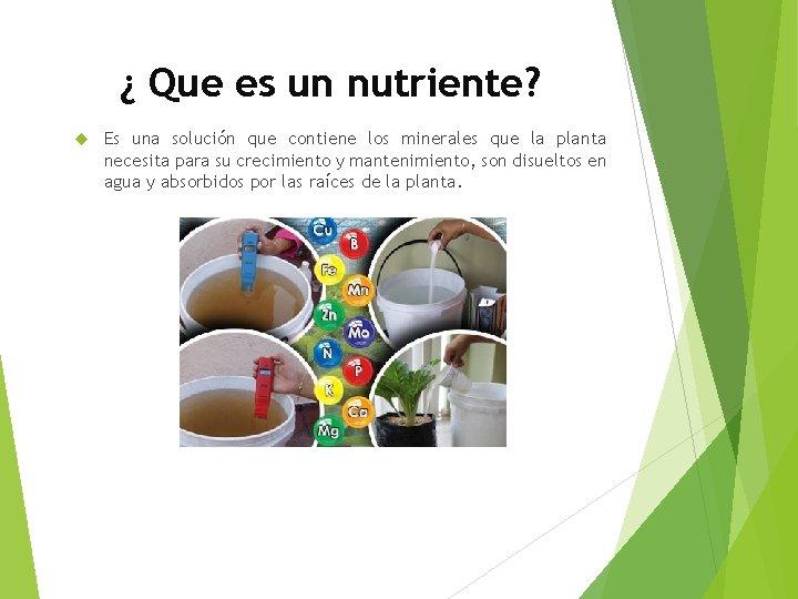 ¿ Que es un nutriente? Es una solución que contiene los minerales que la