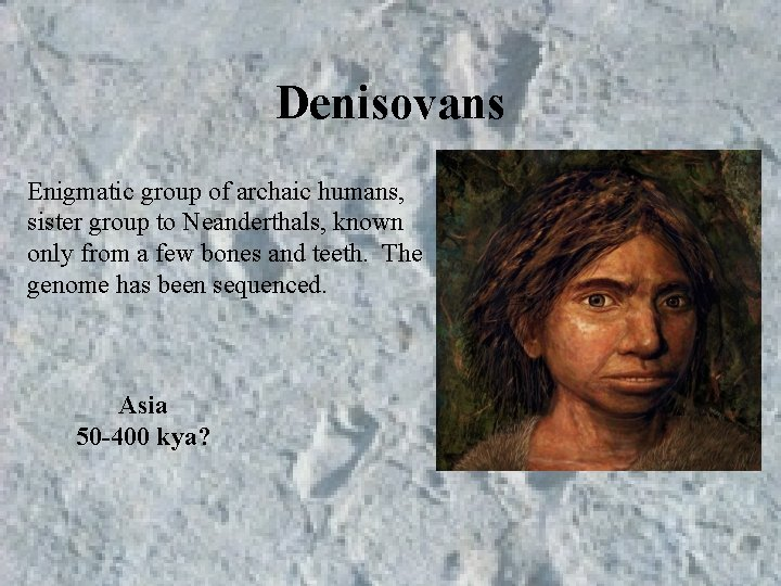 Denisovans Enigmatic group of archaic humans, sister group to Neanderthals, known only from a