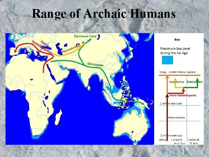 Range of Archaic Humans