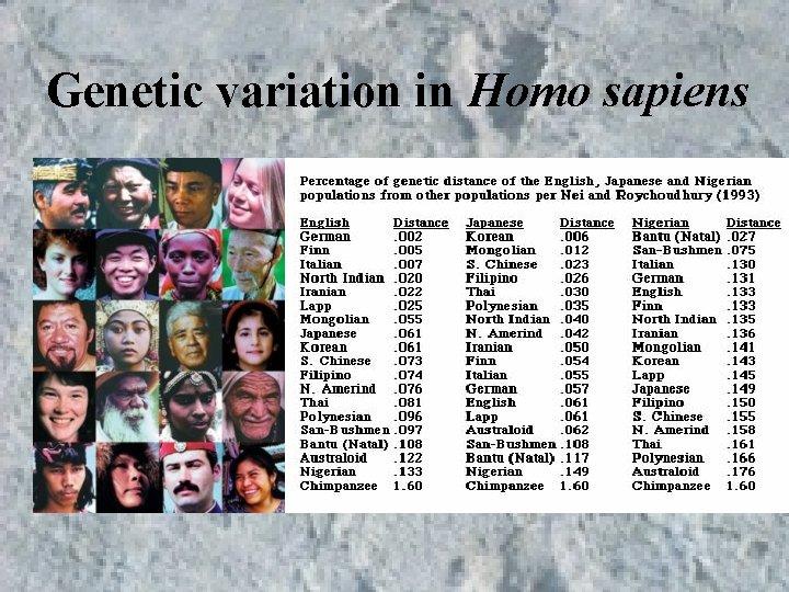 Genetic variation in Homo sapiens