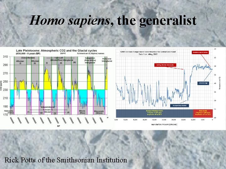 Homo sapiens, the generalist Rick Potts of the Smithsonian Institution