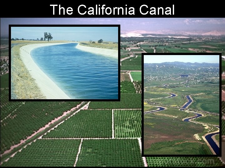 The California Canal