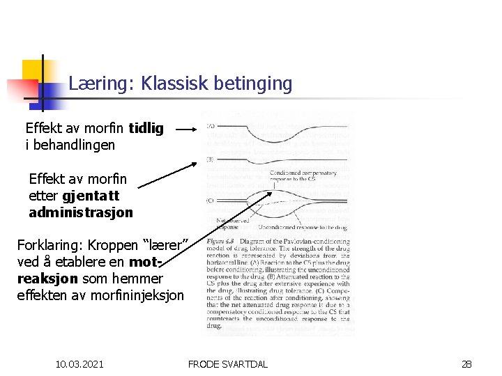 Læring: Klassisk betinging Effekt av morfin tidlig i behandlingen Effekt av morfin etter gjentatt