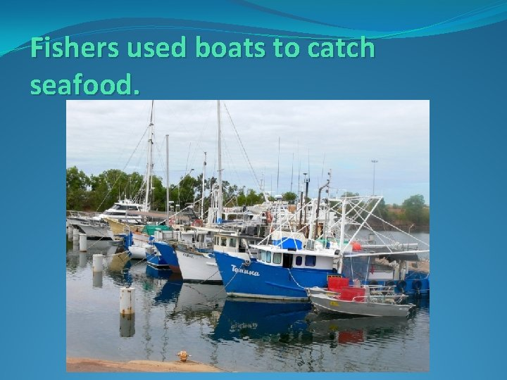 Fishers used boats to catch seafood.