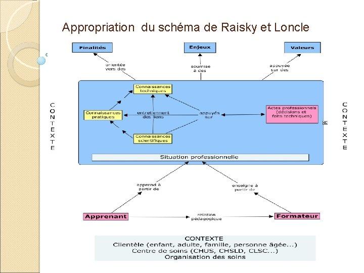 Appropriation du schéma de Raisky et Loncle