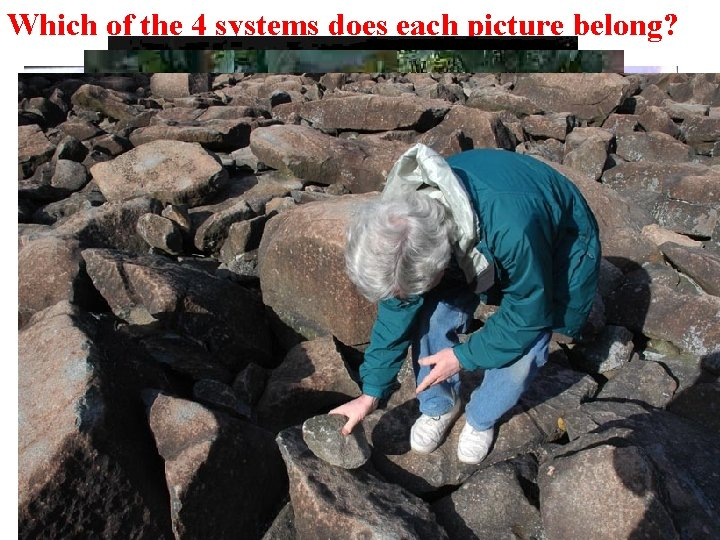Which of the 4 systems does each picture belong?
