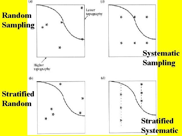 Random Sampling Systematic Sampling Stratified Random Stratified Systematic