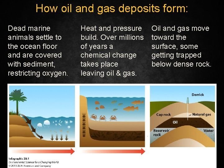 How oil and gas deposits form: Dead marine animals settle to the ocean floor
