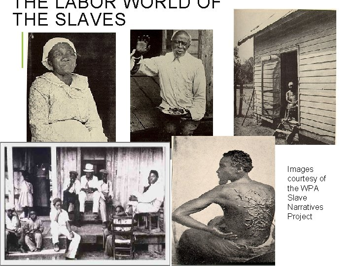 THE LABOR WORLD OF THE SLAVES Images courtesy of the WPA Slave Narratives Project