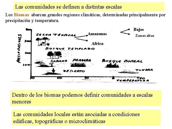 Las comunidades se definen a distintas escalas Los Biomas abarcan grandes regiones climáticas, determinadas