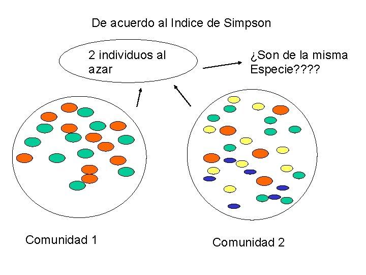 De acuerdo al Indice de Simpson 2 individuos al azar Comunidad 1 ¿Son de
