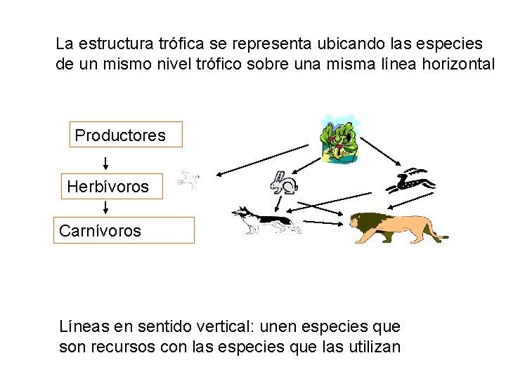 La estructura trófica se representa ubicando las especies de un mismo nivel trófico sobre