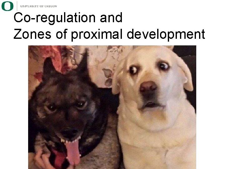 Co-regulation and Zones of proximal development