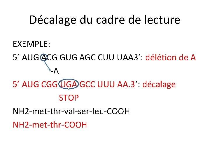 Décalage du cadre de lecture EXEMPLE: 5' AUG ACG GUG AGC CUU UAA 3':