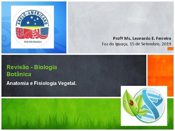 Profº Ms. Leonardo E. Ferreira Foz do Iguaçu, 15 de Setembro, 2019 Revisão -