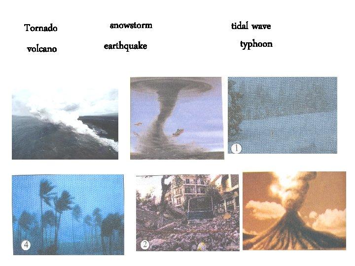 Tornado volcano snowstorm earthquake tidal wave typhoon