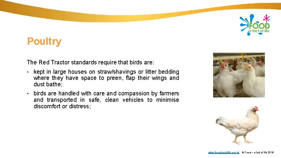 Poultry The Red Tractor standards require that birds are: • kept in large houses