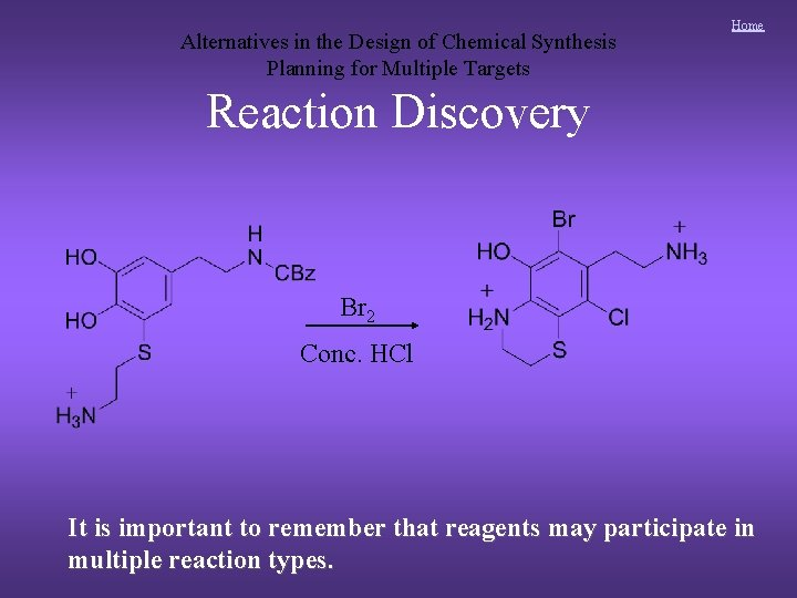 Alternatives in the Design of Chemical Synthesis Planning for Multiple Targets Home Reaction Discovery