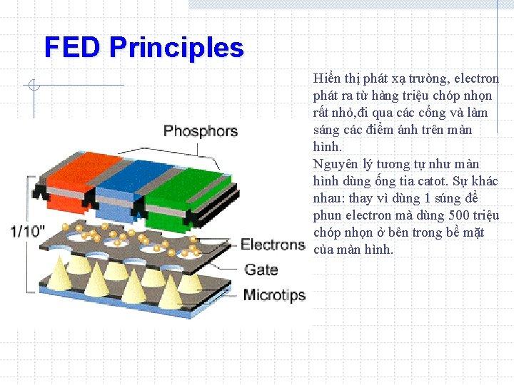 FED Principles Hiển thị phát xạ trường, electron phát ra từ hàng triệu chóp