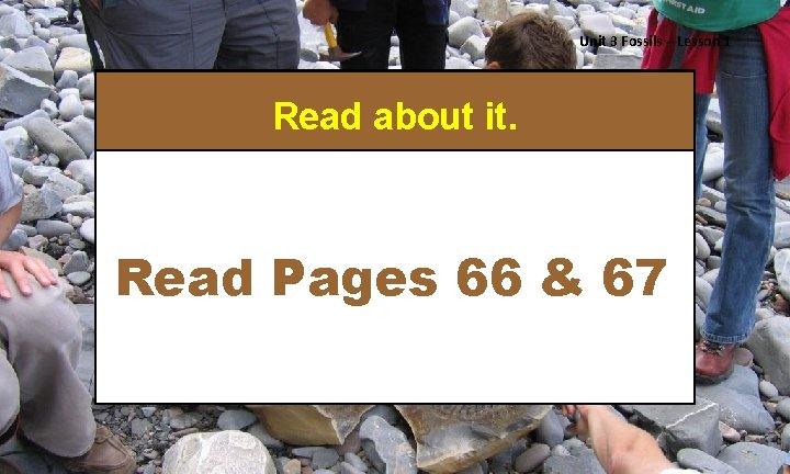Unit 3 Fossils – Lesson 1 Read about it. Read Pages 66 & 67