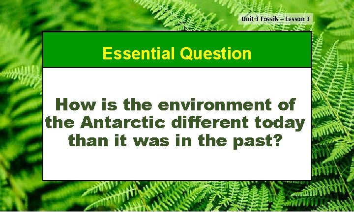 Unit 3 Fossils – Lesson 3 Essential Question How is the environment of the