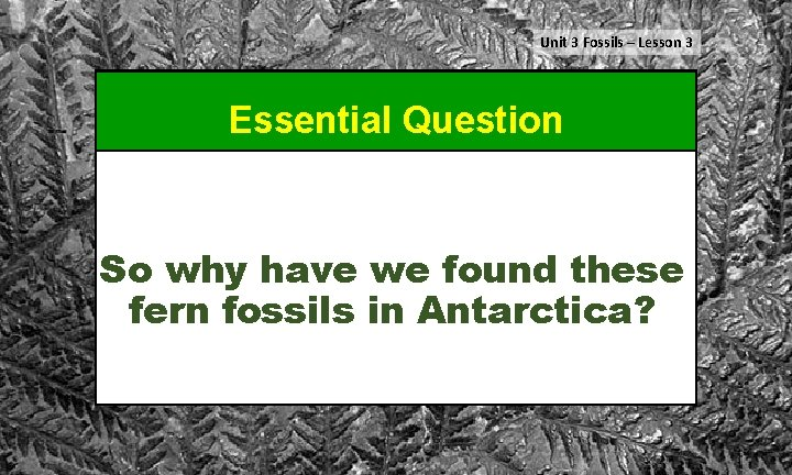 Unit 3 Fossils – Lesson 3 Essential Question So why have we found these
