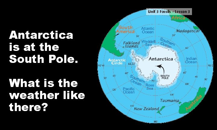 Unit 3 Fossils – Lesson 3 Antarctica is at the South Pole. What is