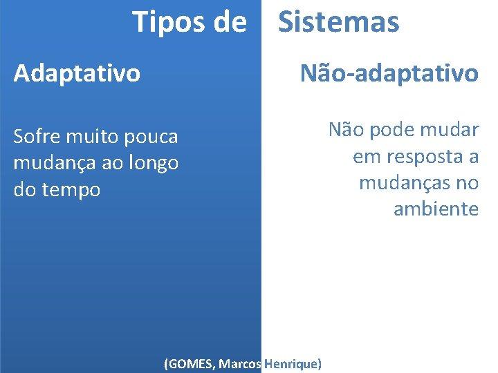 Tipos de Sistemas Não-adaptativo Adaptativo Sofre muito pouca mudança ao longo do tempo (GOMES,