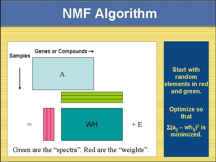 NMF Algorithm Samples Genes or Compounds Start with random elements in red and green.