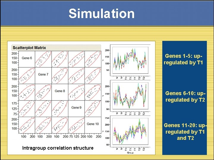 Simulation Genes 1 -5: upregulated by T 1 Genes 6 -10: upregulated by T