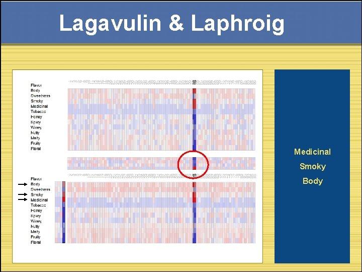 Lagavulin & Laphroig Medicinal Smoky Body