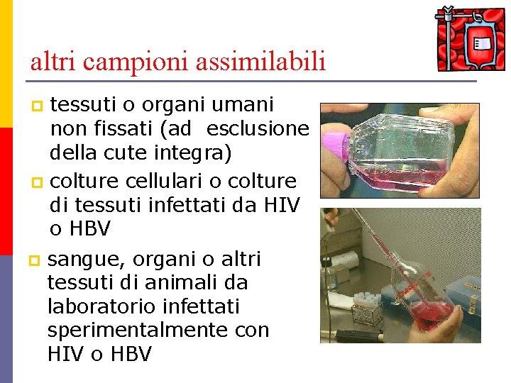 altri campioni assimilabili tessuti o organi umani non fissati (ad esclusione della cute integra)